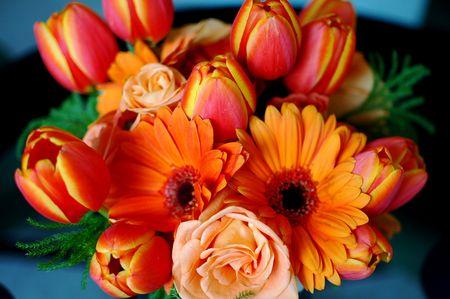 Flores Satisfação